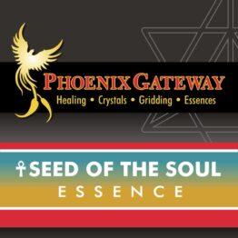 phoenix_gateway_seed_of_the_soul