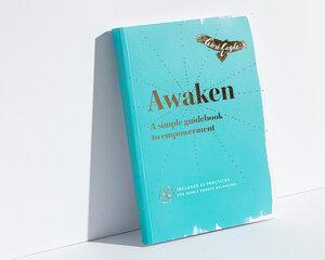 Awaken Gini Eagle book